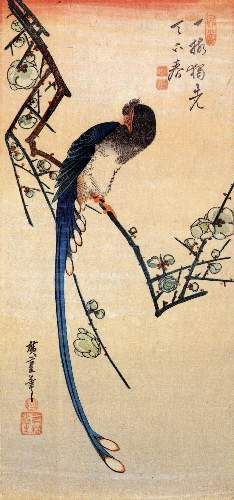 Blue bird on a plumtree by Hiroshige