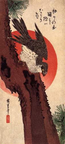 Falcon on a pine with rising sun by Hiroshige