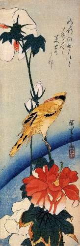 Golden oriole on a hibiscus branch by Hiroshige