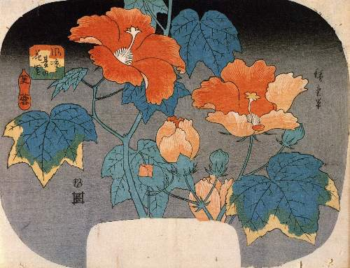 Hibiscus by Hiroshige