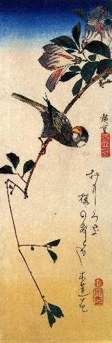 Java sparrow and magnolia by Hiroshige