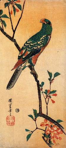 Parrot on a blooming branch by Hiroshige