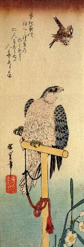 Tied falcon eying a sparrow by Hiroshige