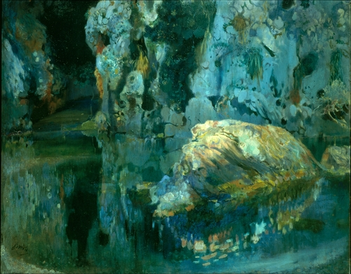 Joaquim Mir - The rock in the pond