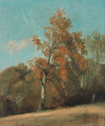 Constable - Study of an Ash Tree