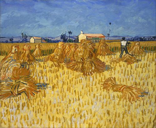 Van Gogh - Corn Harvest in Provence