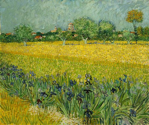 Van Gogh - Field with flowers near Arles