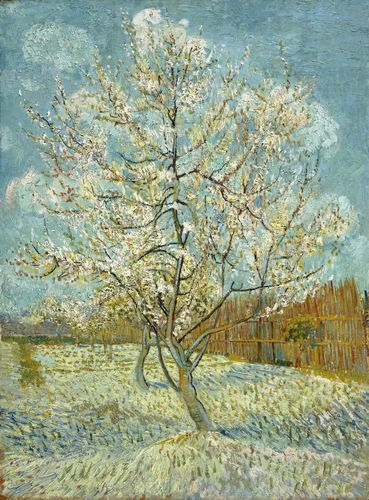 Van Gogh - The pink peach tree