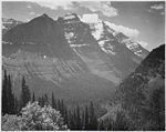 Ansel Adams Downloads