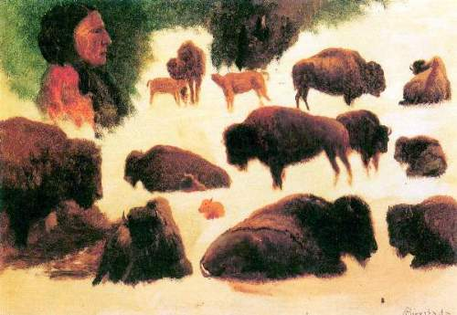 Bierstadt - Study of Buffaloes