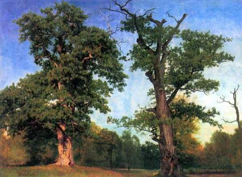 Bierstadt - The pioneers of forests