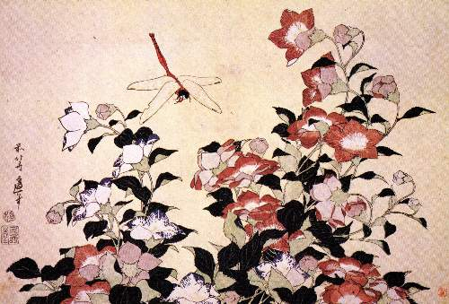 Hokusai - Chinese bell flower and dragonfly