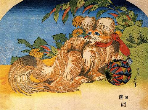 Hokusai - Tschin - the pet dog