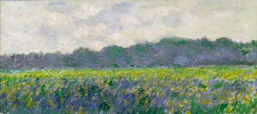 Monet - Field of Yellow Irises