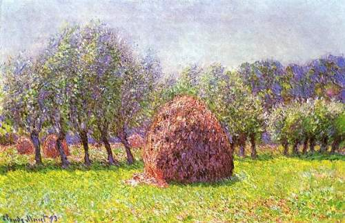 Heap of hay in the field