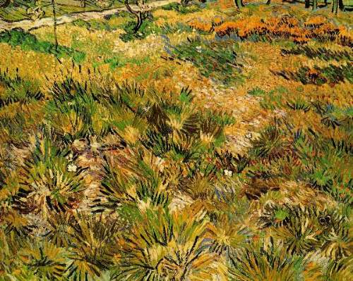 Van Gogh - Meadow in the Garden of Saint-Paul Hospital