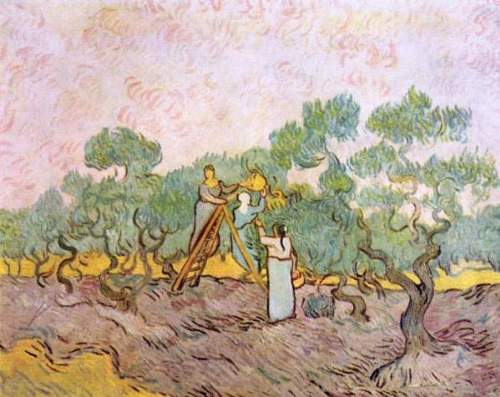Van Gogh - Olive Pickers