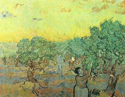 Van Gogh - Olive pickers in a grove