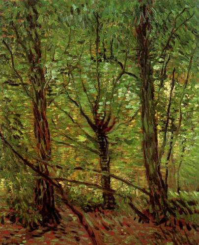 Van Gogh - Trees and undergrowth